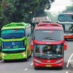 Perbedaan Bus SHD dan HDD Interior, Eksterior dan Mesin