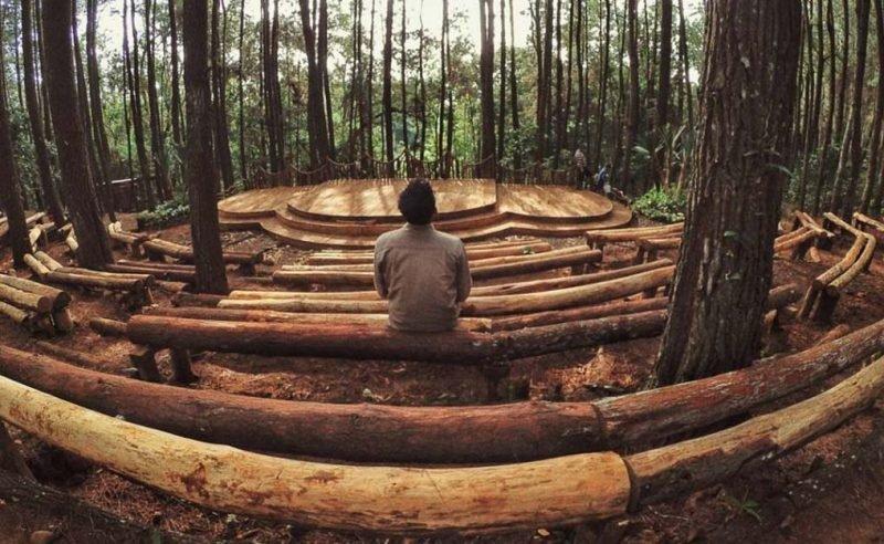 Hutan Pinus Imogiri Jogja